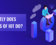 What Exactly Does Developers of The Internet Of Things Do?
